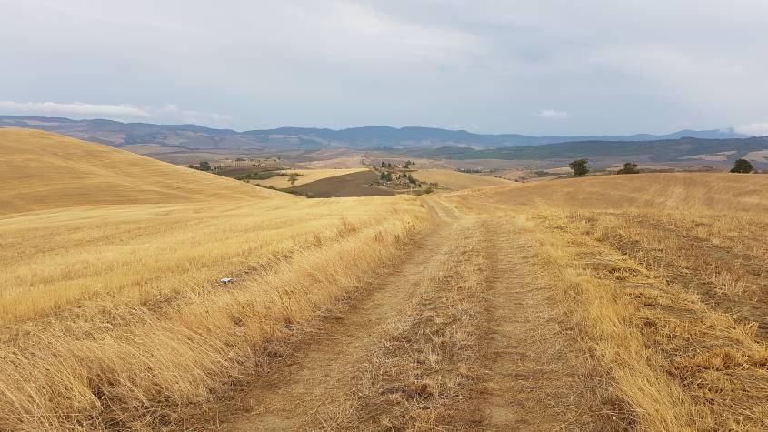 Castiglione d'Orcia campagna Via Francigena