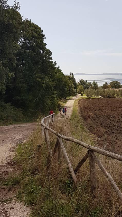 ACQUAPENDENTE - BOLSENA: la Via Francigena verso la regina del Lago