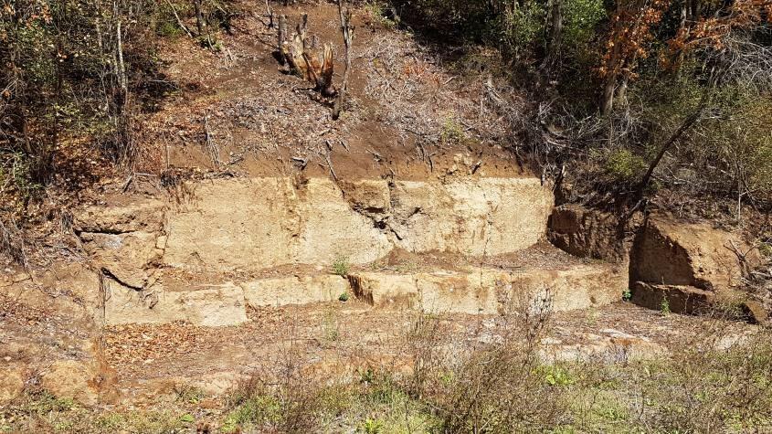 La cava di tufo etrusca