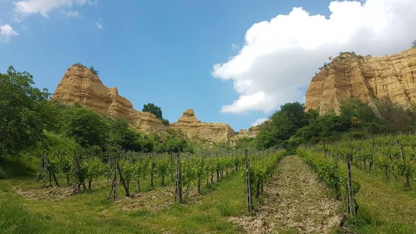 Balze del Valdarno e vigneti a Castelfranco di Sopra