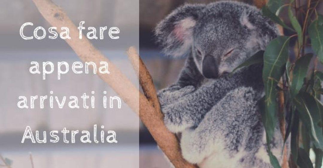 Cosa fare appena arrivati in Australia...e come farlo!