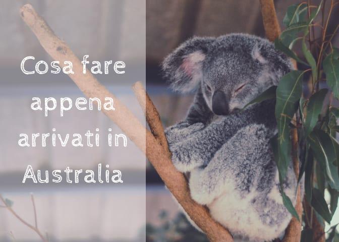 Cosa fare APPENA ARRIVATI in Australia...e come farlo nel miglior modo!