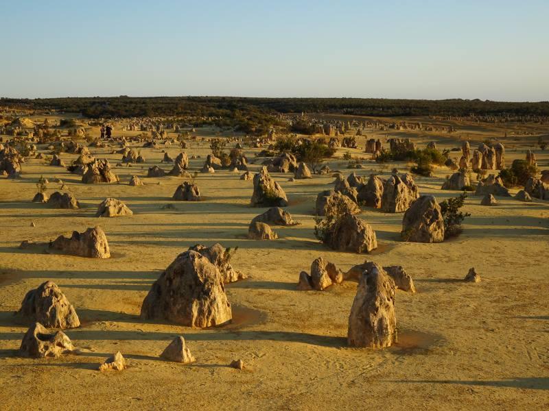 Deserto dei pinnacoli al tramonto
