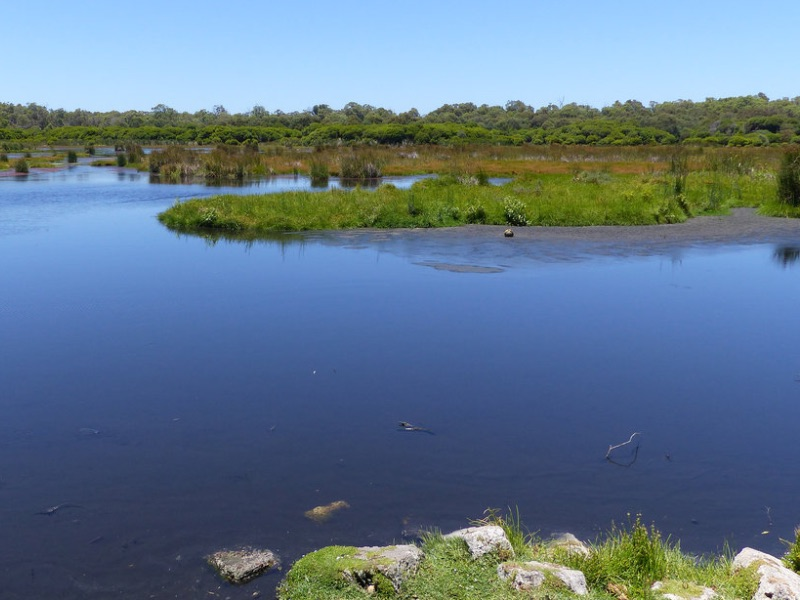 Vista Loch McNess dal percorso Wetlands