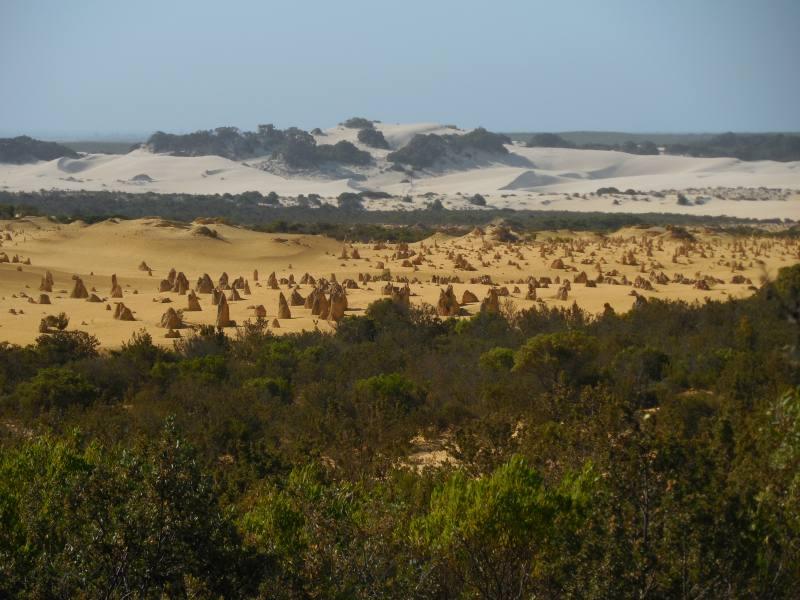 Foto di gruppo nel Deserto dei Pinnacoli