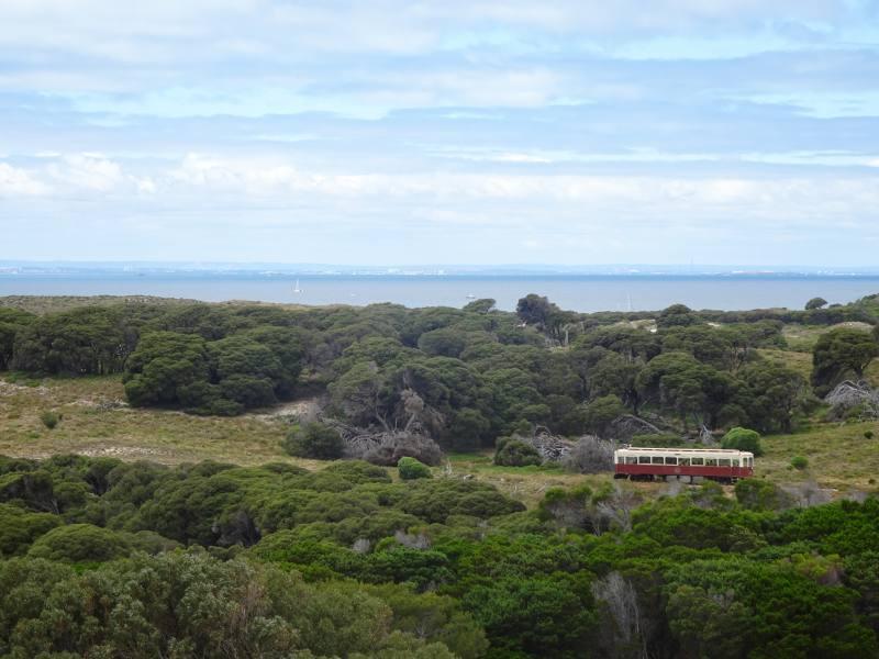 Treno panoramico di Rottnest Island mentre va a Oliver Hill