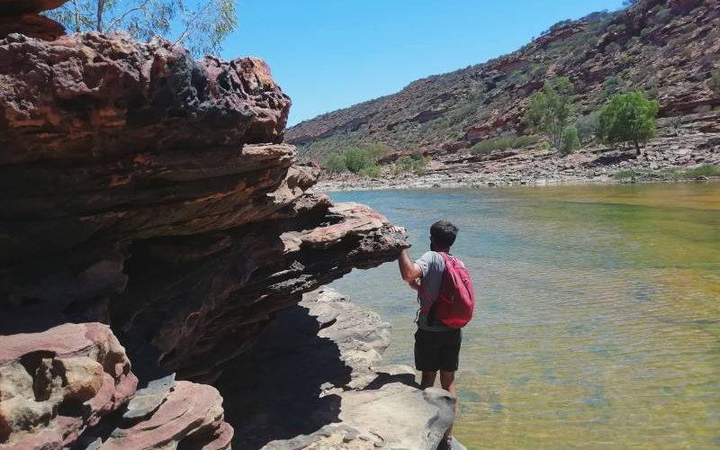 Percorso da trekking Loop Hike all'interno della gola con vista Murchison River