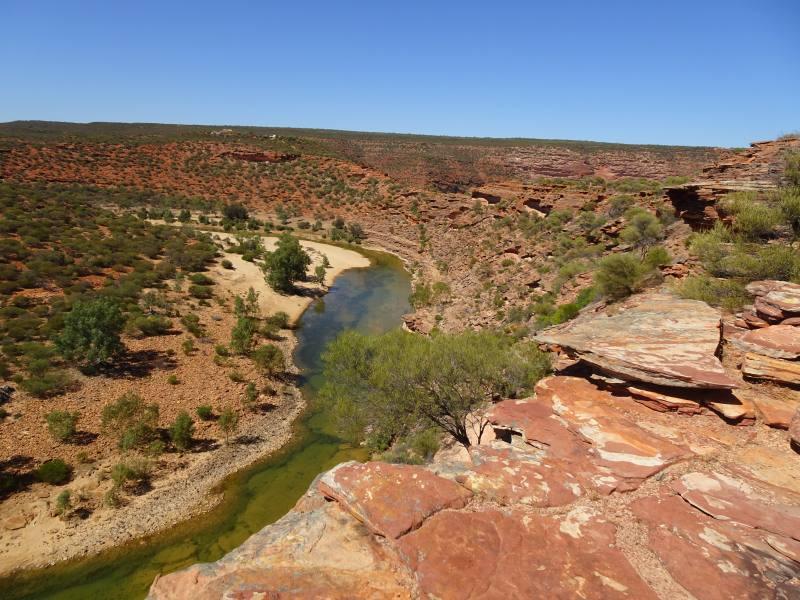 Vista del Murchison River dalla cima della gola durante il trekking Loop Hike al Parco Nazionale Kalbarri