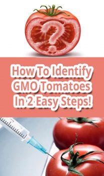 How To Identify GMO Tomatoes In 2 Easy Steps!