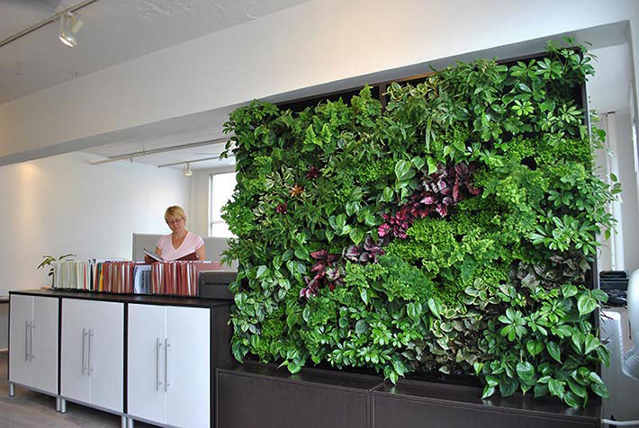 Vertical Wall Garden - Benefits