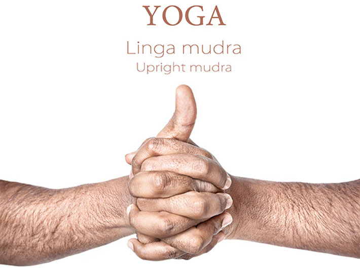 Yoga Mudras For Your Healthy Heart