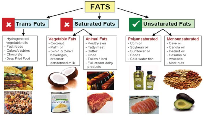 Monounsaturated Fat – The Benefits