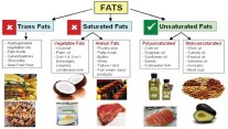 Monounsaturated Fat - The Benefits