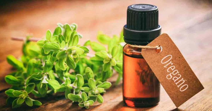 Oregano Oil – Health Benefits