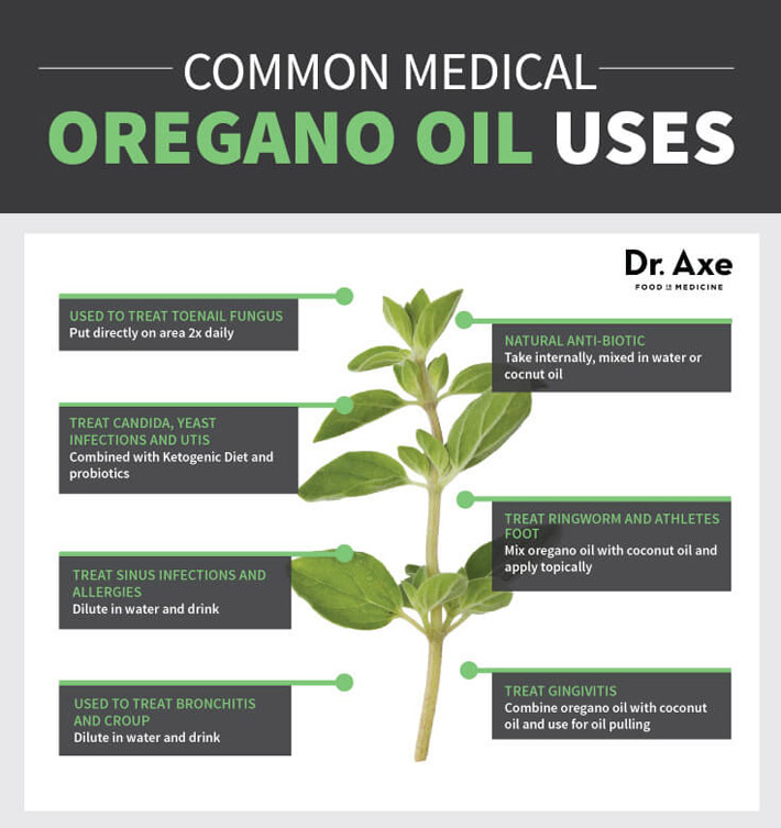 Oregano Oil - Health Benefits