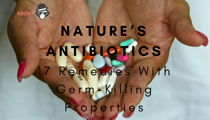17 Remedies With Germ-Killing Properties – Nature's Antibiotics