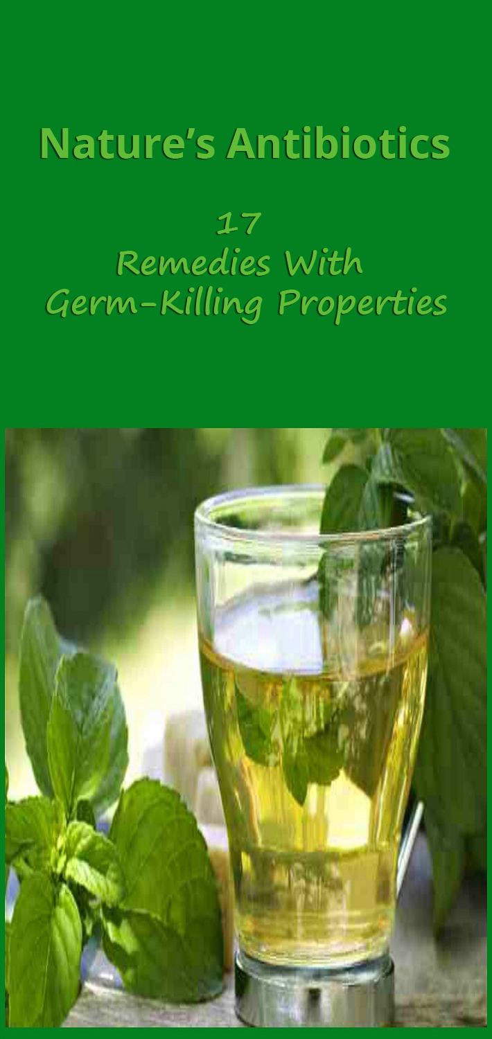 17 Remedies With Germ-Killing Properties - Nature's Antibiotics