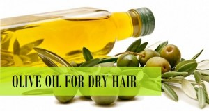 How to use olive oil for dry hair treatment