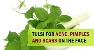 how to use Tulsi to Treat Pimples and Acne 4