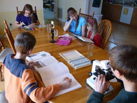 Tips para Homeschooling en cuarentena