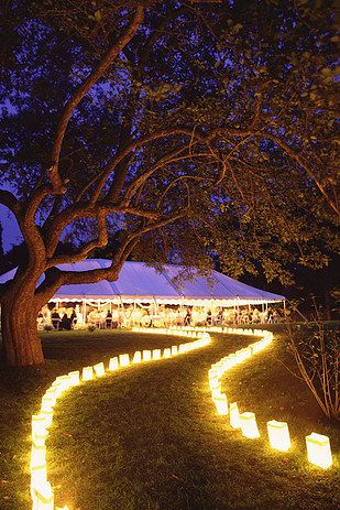 luces para boda al aire libre