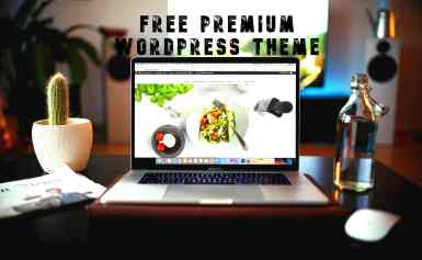 Premium WordPress Theme Free Download in 2019