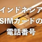 【インドネシア】現地購入したSIMカードの電話番号を確認する方法 (データのみSIM含む)