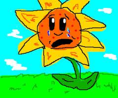 sad sun flower