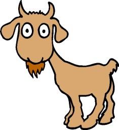 E39 old goat