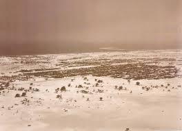 E47 image of sand