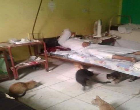 الإهمال في المستشفيات المصرية