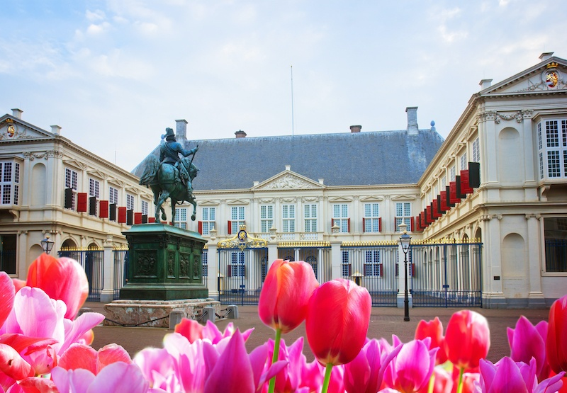 A view of the Noordeinde Palace through some tulips.