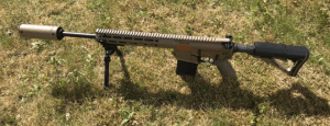 Las fuerzas armadas danesas eligieron un nuevo rifle de francotirador: Colt Canada C20 DMR