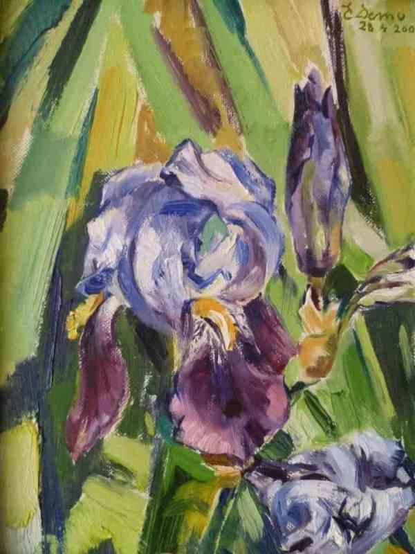 Irisi i vogel, Ergys Demo