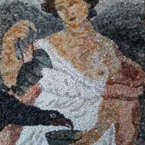 Vajza dhe zogu, Erieta Gajtani