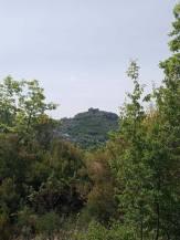 Bride's trail (Stermas-Lunder-Farke) (6)