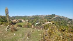 Arbane-Budine-Zhullime-Paper trail (12)