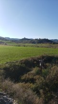 Arbane-Budine-Zhullime-Paper trail (14)