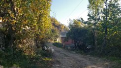 Arbane-Budine-Zhullime-Paper trail (36)