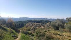 Arbane-Budine-Zhullime-Paper trail (4)
