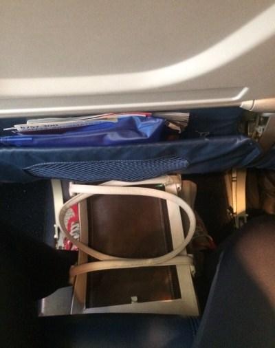como-viajar-animal-de-estimação-cabine-avião (3)