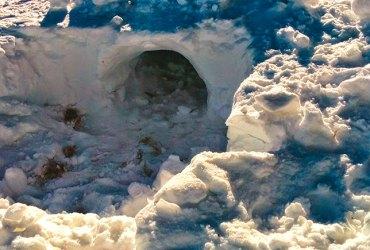 Cova de Neu