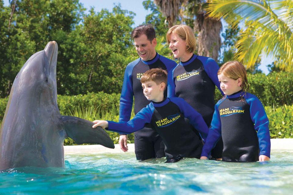 miami seaquarium, aquário em miami