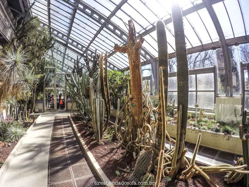 Real Jardim Botânico de Madrid, na Espanha