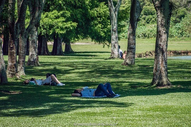 pessoas descansando no parque barigui em Curitiba