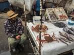 pescador vendendo frutos do mar frescos, em essaouira, marrocos