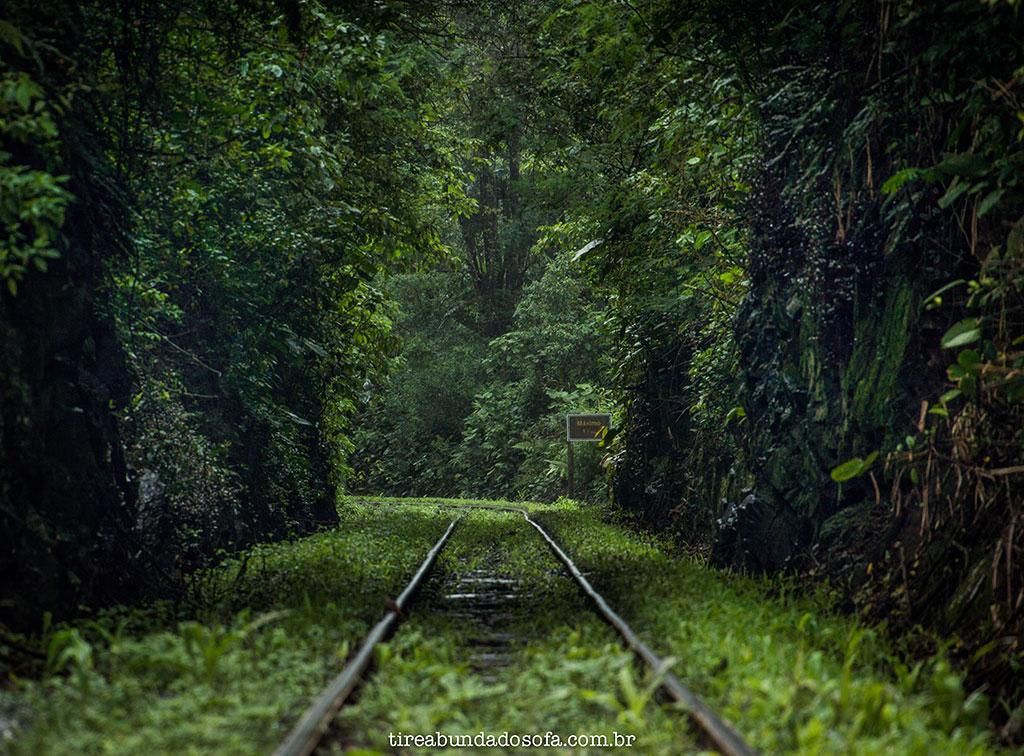 ferrovia da Serra do Mar, em Santa Catarina