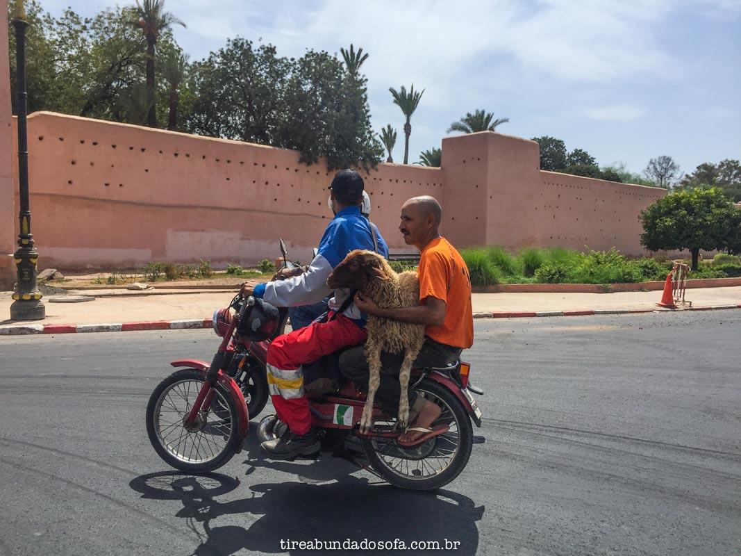 transporte em marrakech