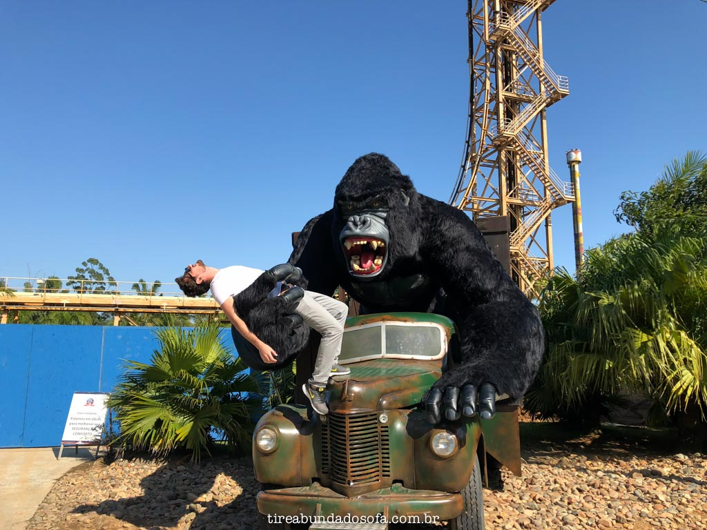 macaco gigante no beto carrero world