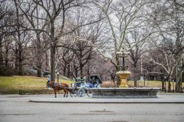 praça no central park em nova york